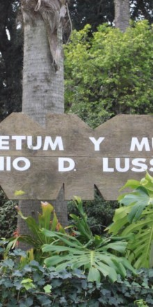 Arboretum y Museo – Antonio D. Lussich