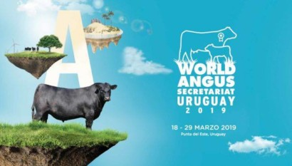 World Angus Secretariat Uruguay 2019